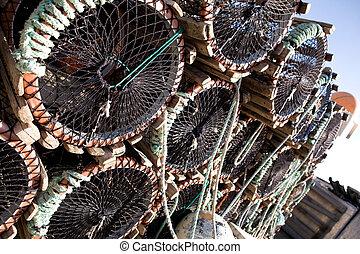 homar pasą, szczegół