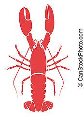 homard, illustration