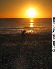 hombre caminar, en, playa, durante, ocaso