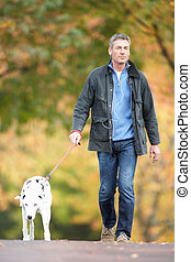 hombre caminar, perro, por, otoño, parque, escuchar, a, jugador mp3
