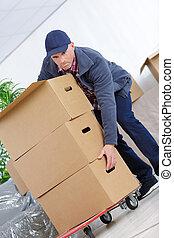 hombre de entrega, con, mucho, de, cardbox, paquete