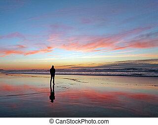 hombre, el mirar, hermoso, ocaso, en la playa