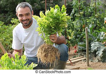 hombre, en, jardín vegetal