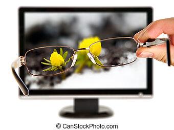 hombre, es, visita, a, flor amarilla, en la exhibición