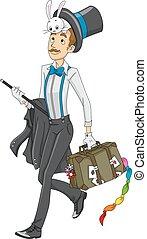 hombre, mago, conejo, equipaje