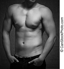 hombre, torso., desnudo, cuerpo