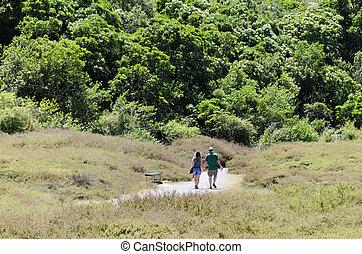 hombre y mujer dar una caminata, -, parejas