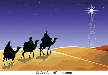hombres, sabio, -, navidad, tres