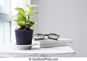 Home and garden decoration of golden pothos in the bedroom with copy space