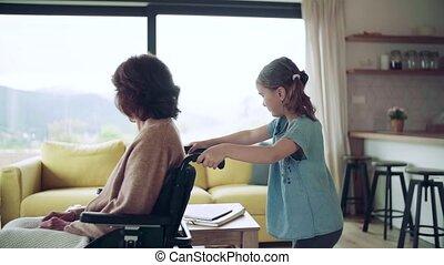 home., elle, girl, petit, personne agee, intérieur, grand-mère, fauteuil roulant