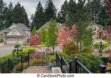 Home Entry Frontyard Landscaped Garden