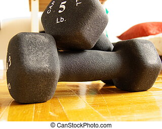 home exercising - two 5 lbs dumbbells on a hard wood floor...