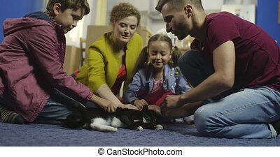 home., famille, heureux, chat