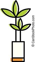home flower in vase