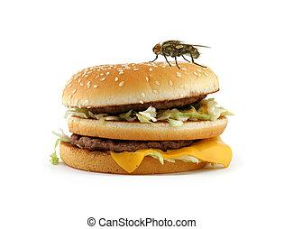 home fly sitting on appetizing hamburger