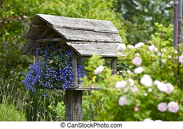 Home Garden. Small Beautiful Garden with Flowers in the Bird...