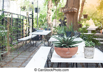 Home garden style, Country and vintage style backyard