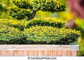 Home Garden Tree Decoration