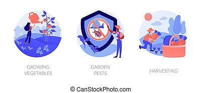 Home gardening abstract concept vector illustration set. Growing vegetables, garden pests, harvesting, planting in ground, organic food, container garden, plant insects, pesticides abstract metaphor.