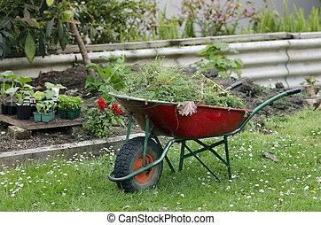 Home gardening  - Wheelbarrow in a garden.
