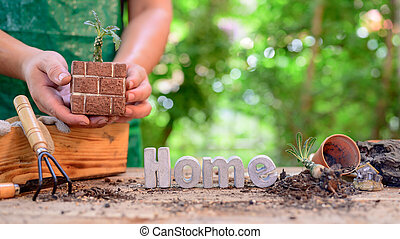 Home gardening when Lock down and Self-quarantine. Planting seeds in soil at botanic garden during the Corona virus crisis. Stay home for relax and Social distancing.