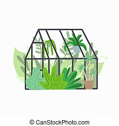 Home greenhouse with various plants. Glass orangery with ...