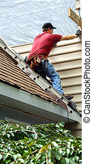 Home Improvements - Young man perches on metal ladder on...