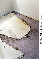 Water leaking damaged plasterboard and carpet