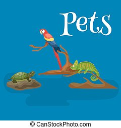 Home pets set, cat dog parrot goldfish hamster, domesticated...