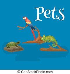 Home pets set, cat dog parrot goldfish hamster, domesticated...