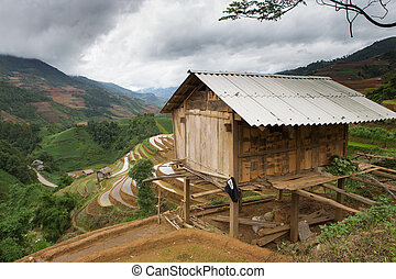 home - Home of Hmong with rice field terraces in Mu Cang...