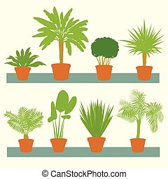 Home plants, green palms, bushes in pots set vector...