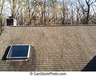 home shingle roof with skylight