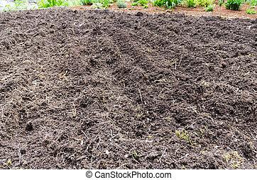 Home vegetable gardening preparation