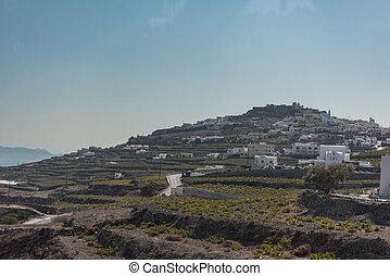 Home vineyard in Santorini