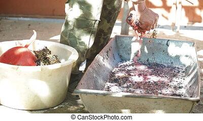 Home Winemaking