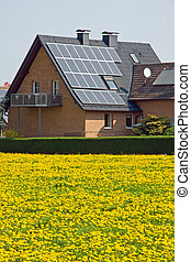 Home with solar panels and flowers