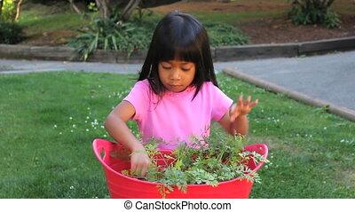 homegrown, girl, carotte, manger, apprécie