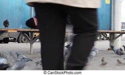 Homeless man sleeping on the bus stop