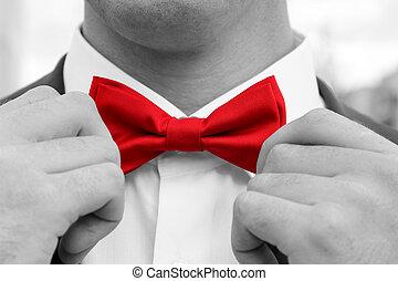 homem, ajusta, arco vermelho, laço, com, hands., foto preta branca, com, colorido, elemento