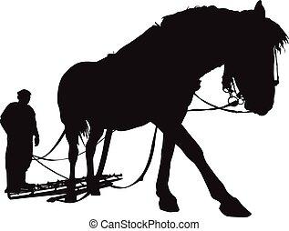 homem, cavalo, silueta