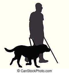 homem cego, dog.eps, guia