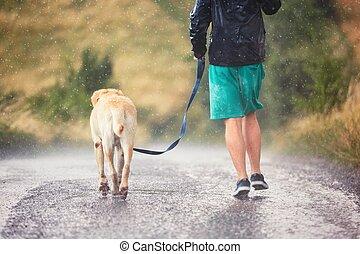 homem, com, cão, em, chuva pesada