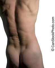 homem, costas, torso