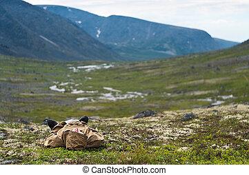 homem, descansar, capim, em, montanhas