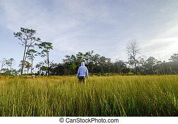 homem, em, um, campo verde