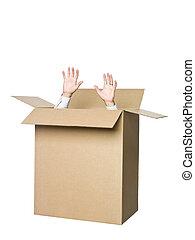 homem, em, um, papelão, box.