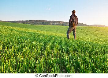 homem, em, verde, meadow.
