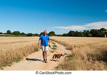 homem idoso, é, andando cão