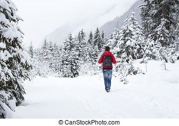 homem jovem, hiking, em, wintry, floresta, paisagem